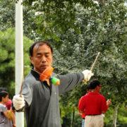 Pekin chiński bąk